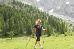 Nordic Walking in Cogne - Aosta Valley